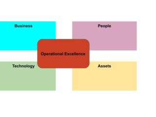 Operational Excellence Expert